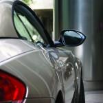 Car Exterior Pearl