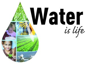 Eco-Friendly-Waterless-Solutions